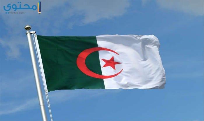 خلفيات عن علم الجزائر جديدة