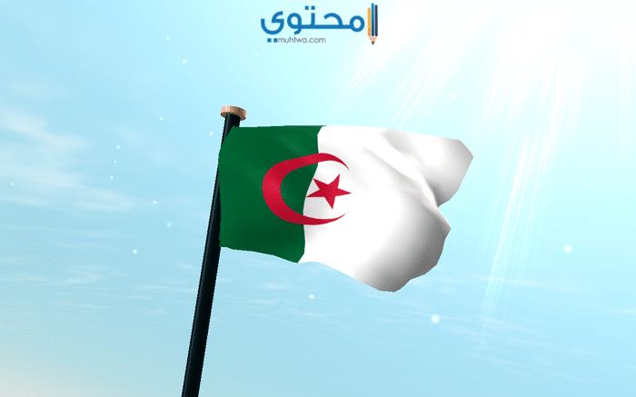 علم الجزائر الجديد