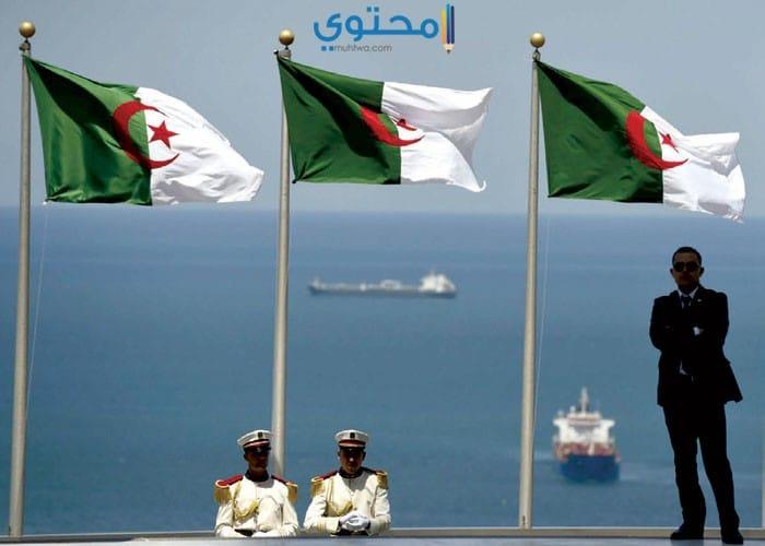 صور علم الجزائر جديدة