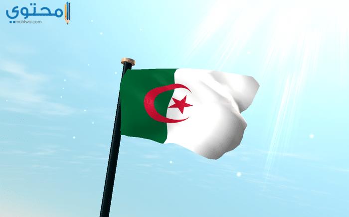 صور عن علم الجزائر لتويتر