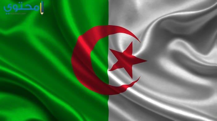 صور علم الجزائر 2018