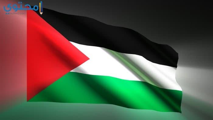 أجمل الصور لعلم الكويت