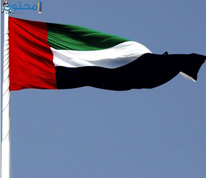 خلفيات علم الكويت 2018