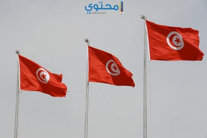 أجدد خلفيات علم تونس 2018