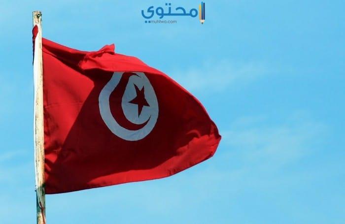 أحدث صور العلم التونسي للفيس بوك