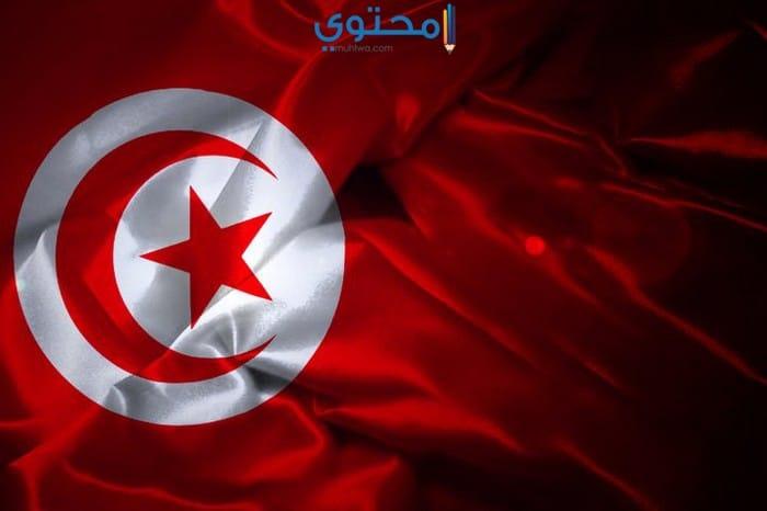 أروع صور وأغلفة علم تونس