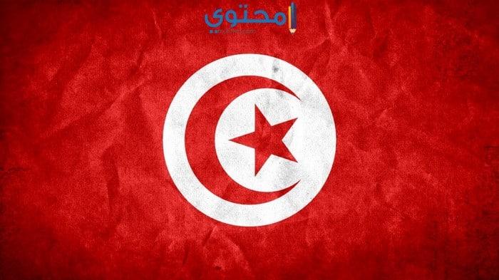 رمزيات علم تونس الجديدة