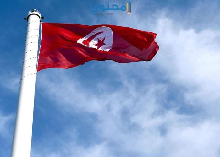 صور ورمزيات علم تونس