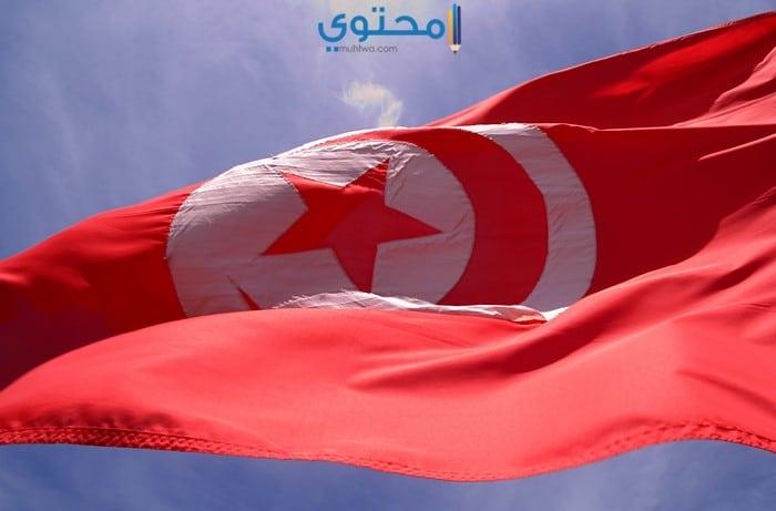 صور ورمزيات علم تونس الجديدة