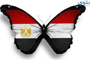 اجمل صور علم مصر للفيس بوك وتويتر