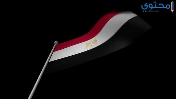 اجمل صور علم مصر للفيس بوك وتويتر موقع محتوى