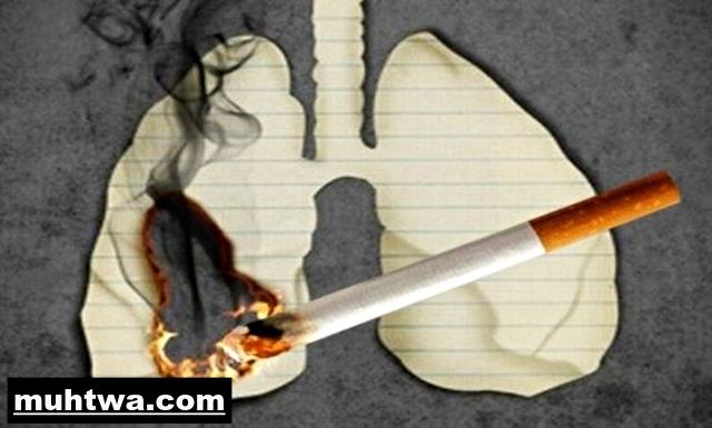 صور عن التدخين