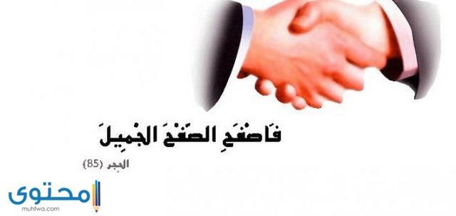كلمات مصورة عن التسامح