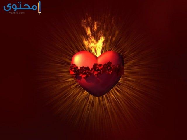 خلفيات حب وغرام