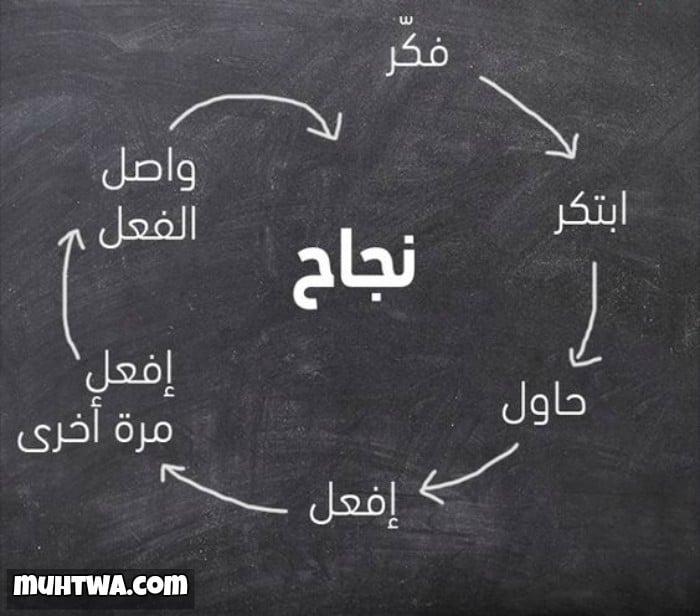 نصائح وحكم عن النجاح موقع محتوى