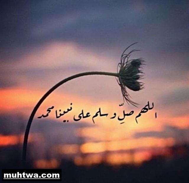 صور عن سيدنا محمد