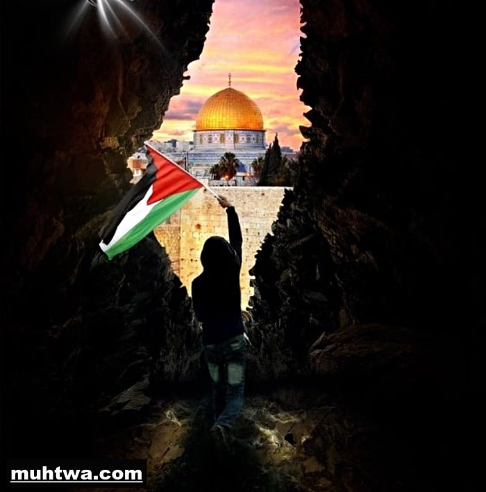 صور فلسطين