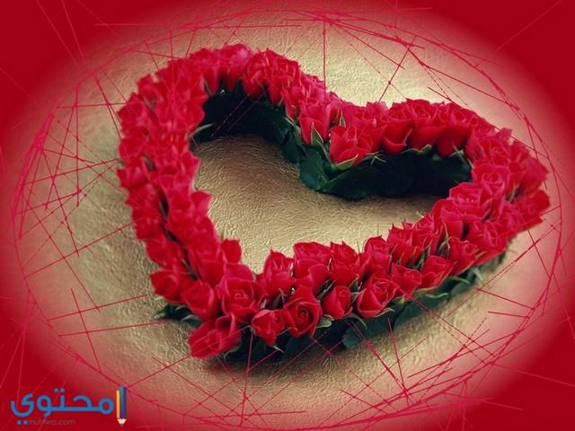 خلفيات قلوب ورد