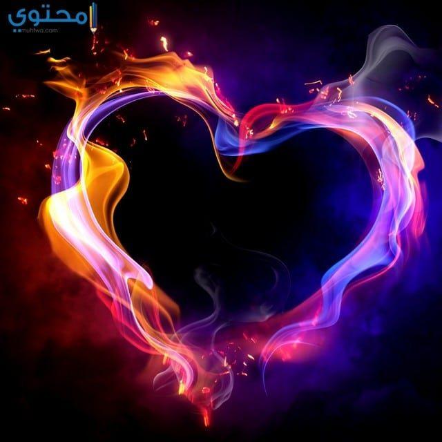 قلوب حب جديده