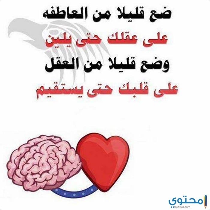 حكم وأمثال وكلام جميل - Google+
