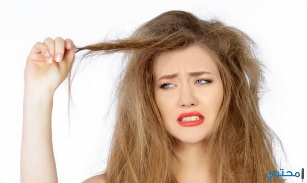 طرق علاج الشعر الهايش