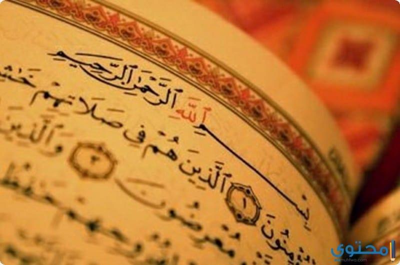 أهمية الدين في حياة الإنسان المسلم