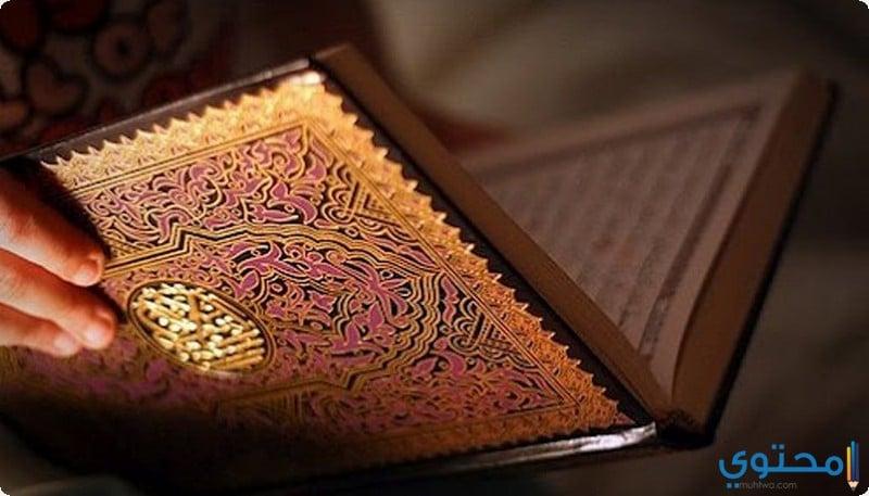 دور الدين في حياة الفرد والمجتمع