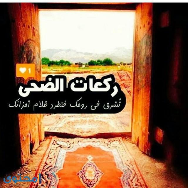 حالات اسلامية