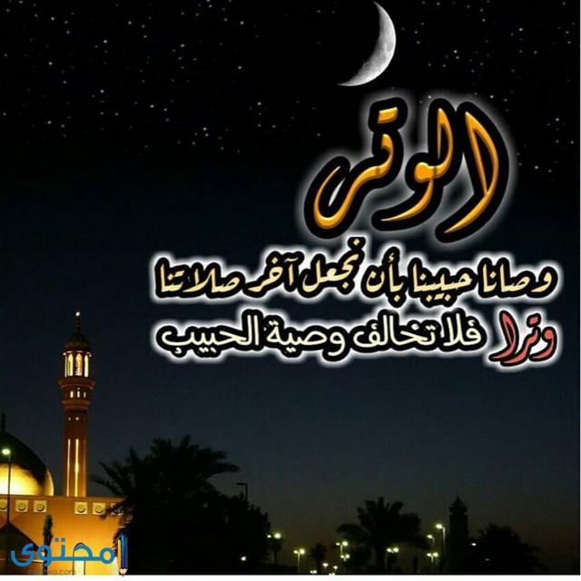 جمل اسلامية للواتس