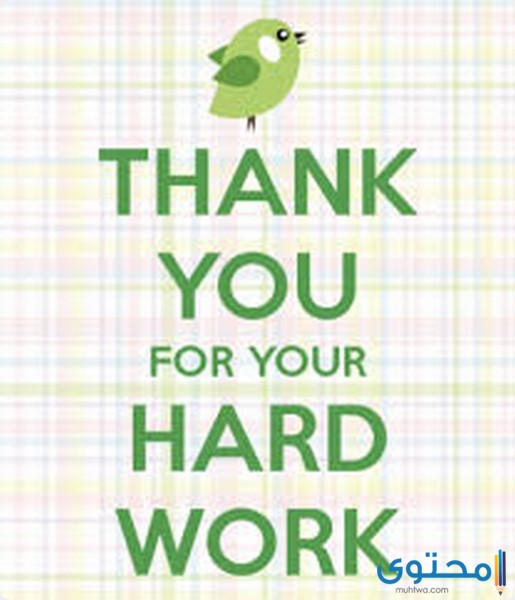 عبارات شكر وتقدير