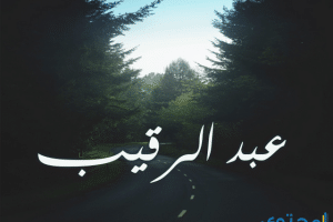 معنى اسم عبد الرقيب