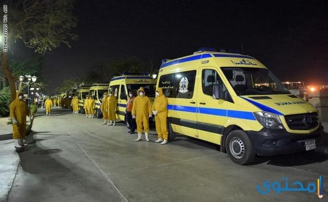 عدد مصابين فيرس كورونا في مصر