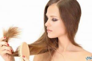وصفة طبيعية لعلاج الشعر الجاف