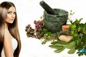 أحدث طرق علاج تساقط الشعر بالأعشاب