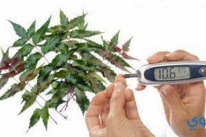 أعشاب طبيعية لعلاج مرض السكر