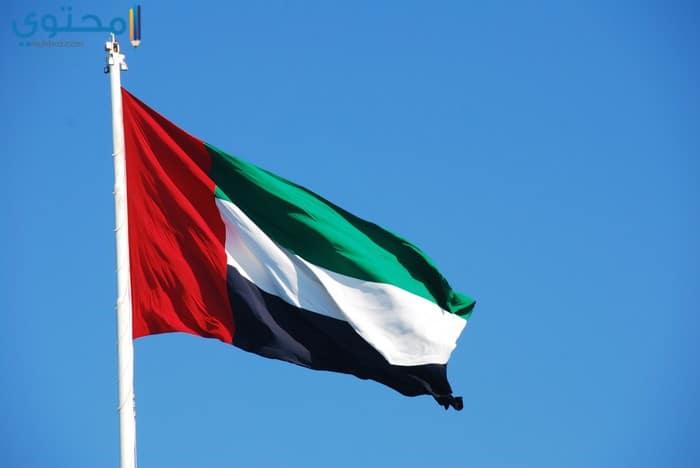 علم الإمارات للفيس وتويتر