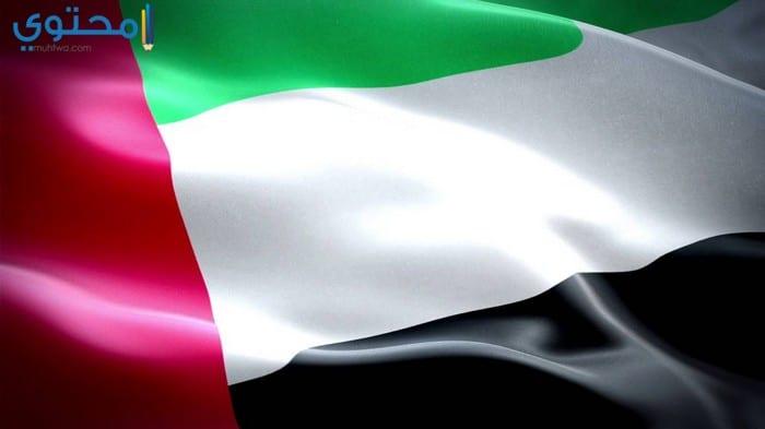 أروع صور العلم الإماراتي