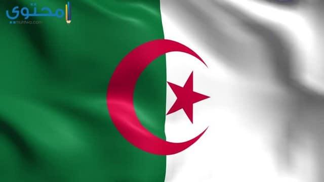 أروع الصور لعلم الجزائر