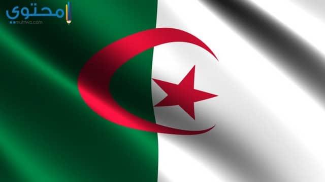 صور وخلفيات لعلم الجزائر