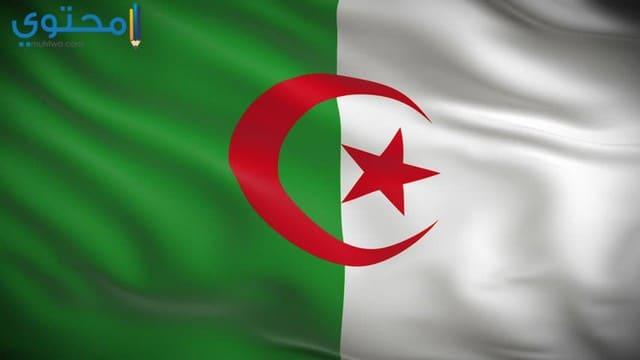 أحدث الصور علم الجزائر