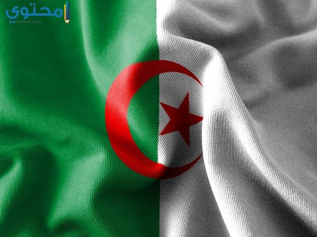 خلفيات فيس بوك علم الجزائر