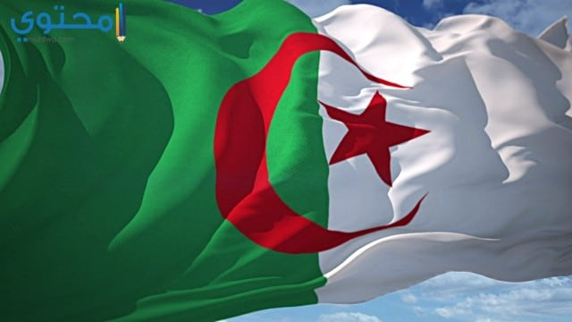 خلفيات علم الجزائر للأيفون