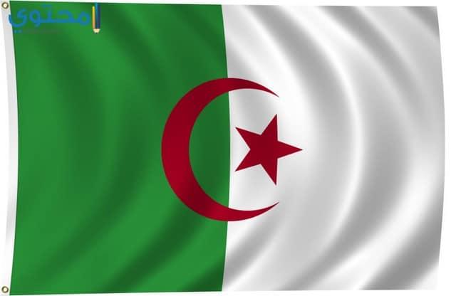 صور لعلم الجزائر روعة