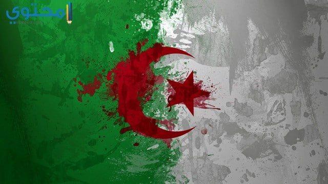 علم الجزائر للفيس بوك