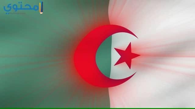 خلفيات علم الجزائر جديدة