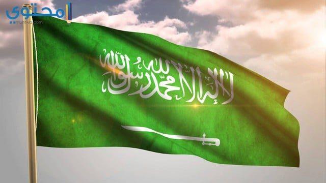 رمزيات علم السعودية 2021