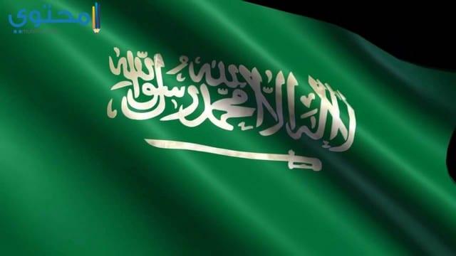 صور علم السعودية للفيس