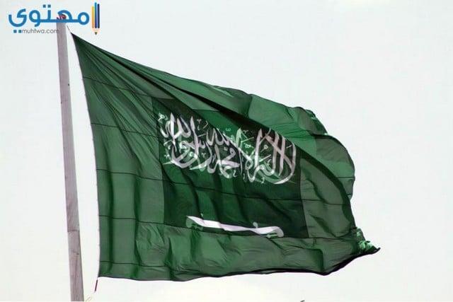 علم السعودية للفيس بوك