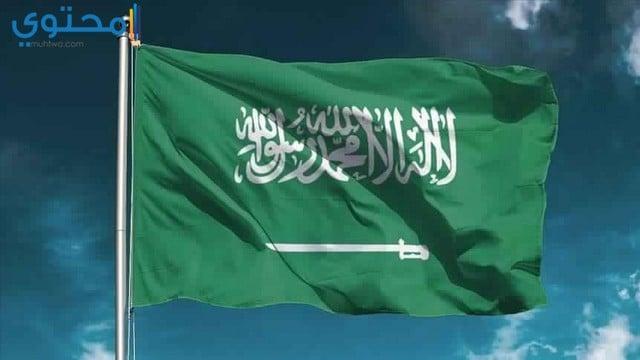 علم السعودية بحجم كبير
