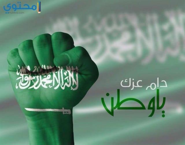 أجمل الصور لعلم السعودية